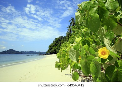 Tropical Beach of Coibita, aka Rancheria, with Isla Coiba in the Background. Coiba National Park, Panama