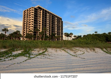 Tropical Beach Condominium Highrise Building, Palm Trees, Vines and Sand in the foreground. Beach Living, Seaside Landscape, Florida Homes. Blue Sky, Sunset Background, Sand foreground. Real Estate