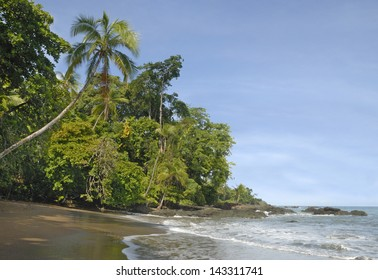 Tropical Beach in Corcovado National Park, Costa Rica