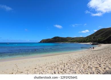 A tropical beach in Fiji: Octopus Beach, Waya Island, Yasawa, Fiji