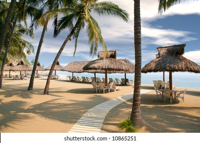 tropical beach huts lined up under palm trees