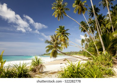 Tropical beach in indonesia sumatra