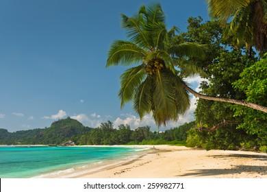 Tropical beach at Mahe island Seychelles. Horizontal shot