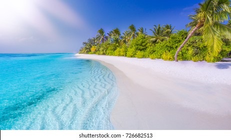 Tropical beach nature landscape under sunlight. Exotic vacation, holiday concept as travel and tourism background banner