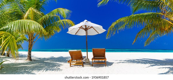 Tropical beach nature as summer landscape with lounge chairs and palm trees calm sea horizon banner. Luxurious travel landscape, beautiful destination for vacation or holiday. Beach scene, freedom