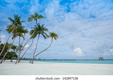 Tropical beach on the island in the Indian Ocean, Maldives