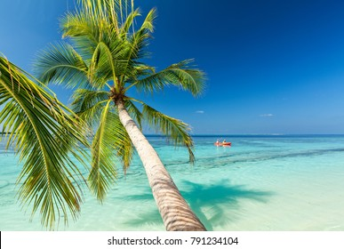 Tropical beach on the island Vilamendhoo in the Indian Ocean, Maldives