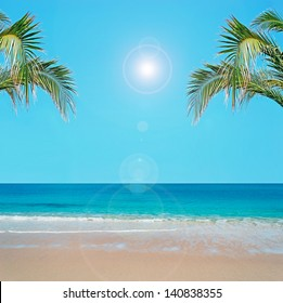 tropical beach with palm tree and golden sand under a bright sun