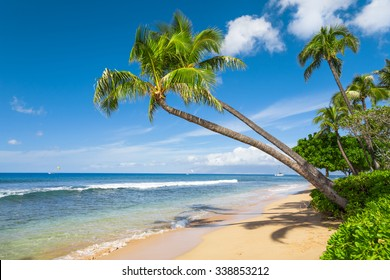 hawaiian beaches images stock photos vectors shutterstock