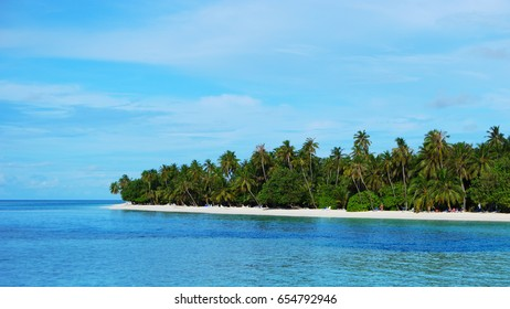 Tropical beach with palm trees at the Maldives