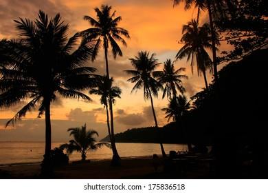 Tropical beach with palm trees at sunrise, Wua Talab island, Ang Thong National Marine Park, Thailand