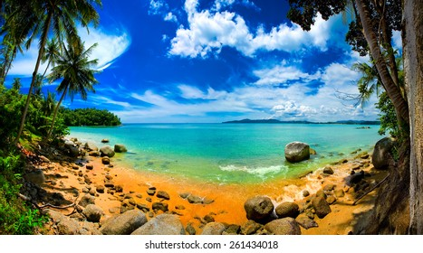 Tropical Beach Panorama with Palm Trees