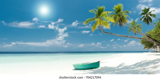 Tropical Beach Panorama with Palm Trees, white Sand and turquoise Ocean