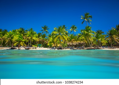 Tropical beach in Punta Cana, Dominican Republic