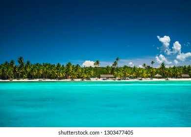 Tropical beach in Punta Cana, Dominican Republic. Exotic seascape.