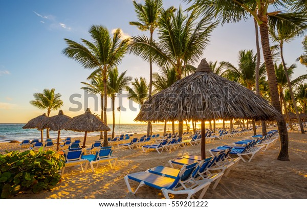 Tropical Beach Resort in Punta Cana, Dominikanische Republik