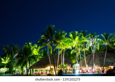 Tropical beach restaurant with palm trees at night