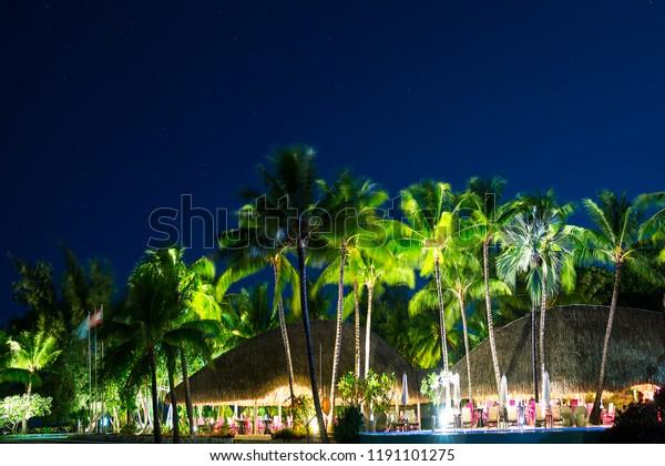 Tropical Beach Restaurant Palm Trees Night Stock Photo Edit