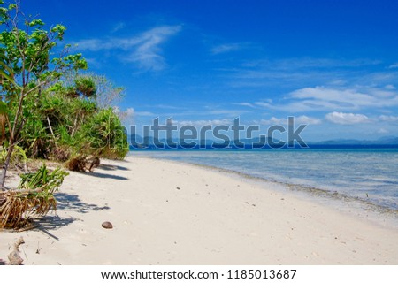 tropical beach scene background southern philippines stock photo