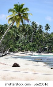 Tropical beach scene - Mentawai Islands Indonesia This remote area of Indonesia is home to some beautiful beaches and some of the best surf breaks in the world.