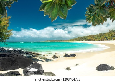 Tropical Beach scenery with palm trees, white sand and turquoise ocean