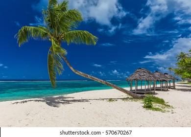 Tropical beach with a single palm tree and a beach fale, Samoa