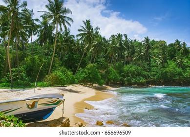 Tropical beach in Sri Lanka, Mirissa