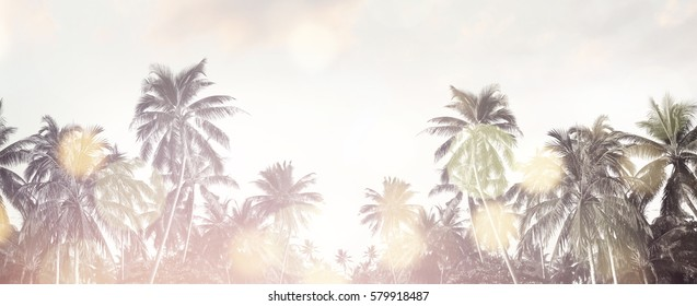 Tropical beach summer background with palm trees silhouette at sunset. Coconut palm trees at tropical coast with vintage effect. Bokeh effect. Panorama
