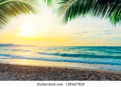 Tropical beach at sunset with coconut branches in the sky. Travel and natural background.