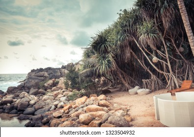 Tropical beach vintage scenery with sunbed among palm trees on rocky coast
