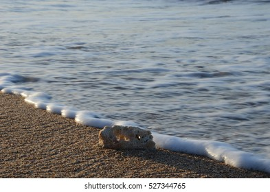 Tropical Beach Waves at Afternoon Sunlight with Coral
