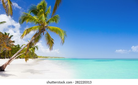Tropical beach as a wild nature scenery in Punta Cana, Dominican Republic