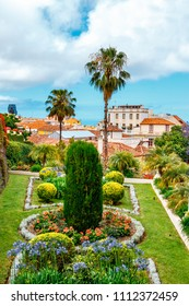 tropical botanical gardens in La Orotava town, Tenerife, Canary Islands