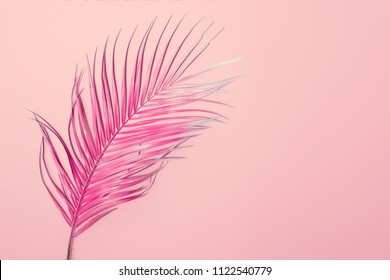 Tropical bright pink background with exotic painted tropical palm leaf. Minimal fashion summer concept. Flat lay.