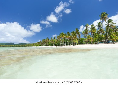 Tropical Caribbean beach on Samana peninsula in the Dominican Republic