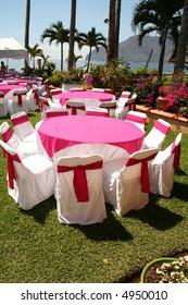 tropical celebration preparation