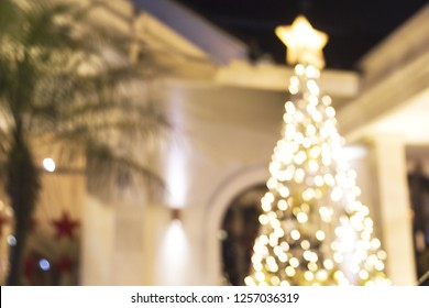 Tropical Chirstmas concept: big shiny tree and green palm. Festive concept. Bali.