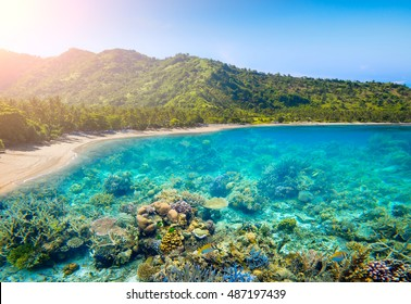 Tropical coast on Lombok,Indonesia under and above water.