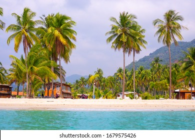 tropical coast with palm trees and a cafe, sea holidays in Asia, view from the sea