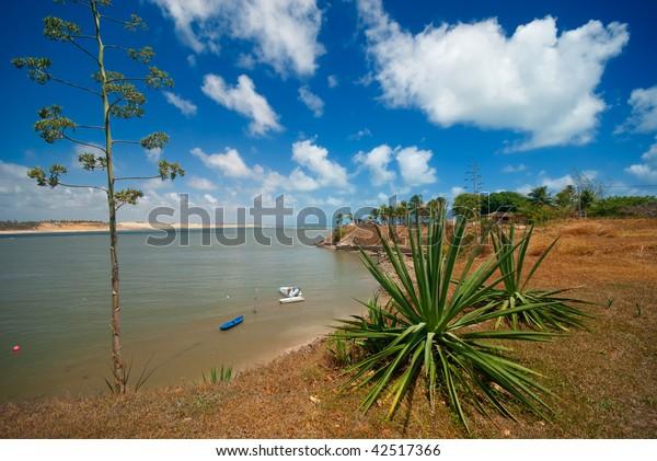 Tropical coast of Tibau do Sul near pipa brazil
