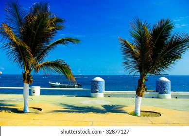Tropical coast in Veracruz, Mexico