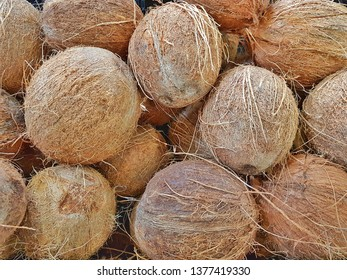 Tropical Coconuts from the dominican republic