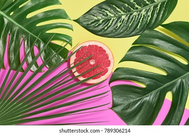 Tropical Colorful Summer Design Set. Palm Leaves and Fresh Fruits. Trendy Fashion concept. Creative Bright background, Beach leaf. Minimal art