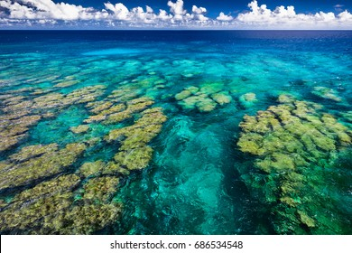 Tropical coral reef on Upolu, Samoa Islands, perfect for snorkling