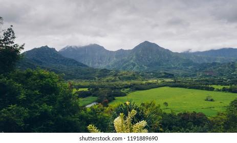 Tropical fields and mountains on rainy day in Hanalei, Kauai, Hawaii