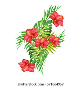Tropical flowers.watercolor tropical leaves.Hand drawn leaves illustration in watercolor. Watercolor exotic leaves painting.tropical flowers. floral elements isolated on white background