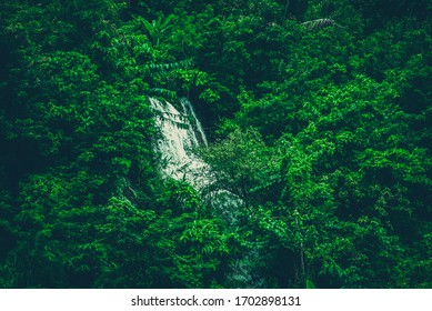 tropical forest over the lake in Thailand national Park