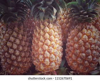tropical fruit pineapple with yellow texture, focal point in the middle with glow light
