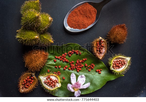 Tropical Fruits Flower Seeds That Give Stock Photo (Edit Now) 775644403