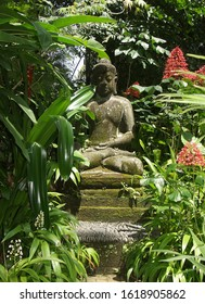 tropical garden forest Buddha statue fresh green tropical leaves flowers Bali Indonesia green background nature wildlife natural Park after rain beautiful view Park forest tropical poster postcard